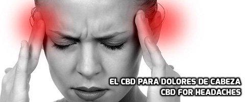 El CBD para dolores de Cabeza