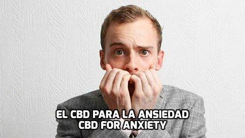 El CBD para la Ansiedad