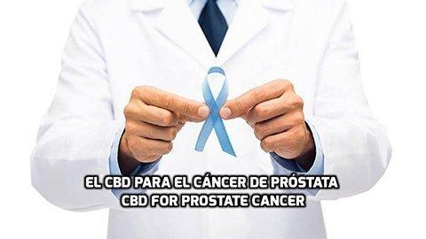 El CBD para el Cáncer de Próstata