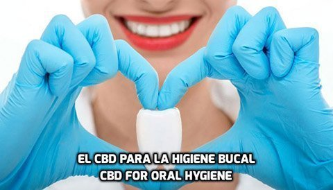 El CBD para la Higiene Bucal
