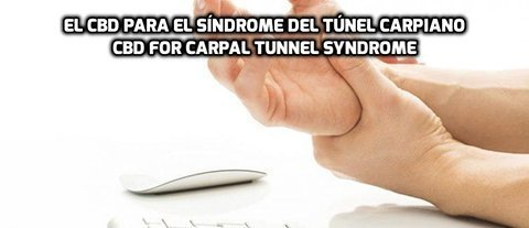 El CBD para el Síndrome del Túnel Carpiano