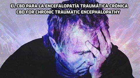 El CBD para la encefalopatía traumática crónica