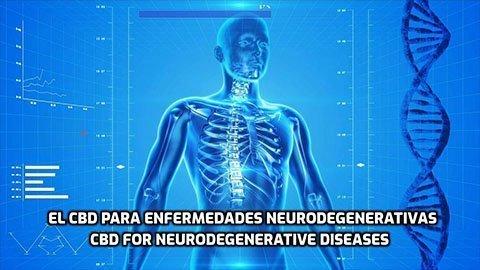 El CBD para enfermedades Neurodegenerativas