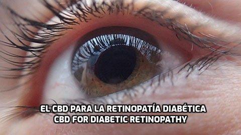 El CBD para la Retinopatía Diabética