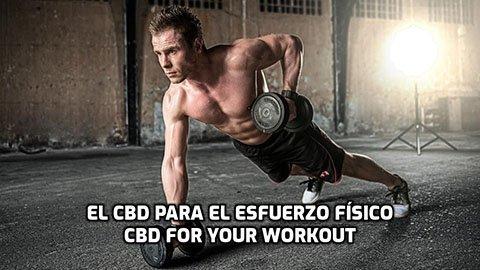 El CBD para el esfuerzo físico